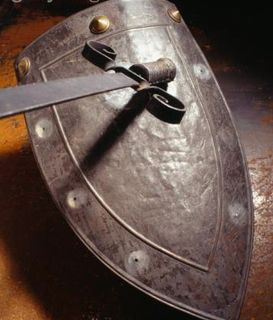 Sword Shield 2007